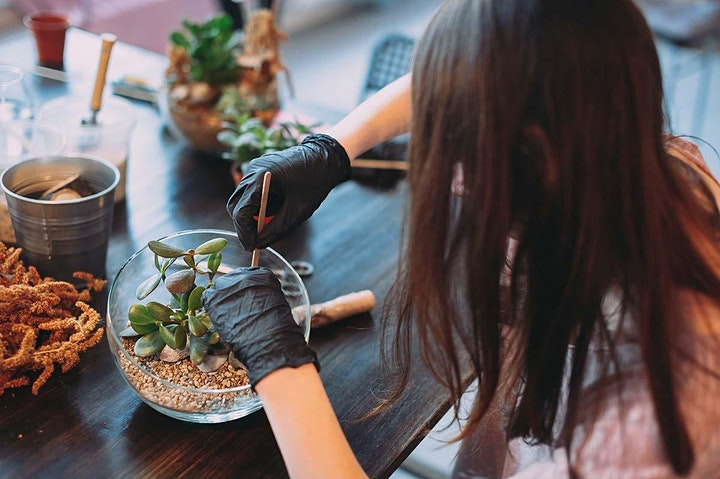 Holiday Workshop: Makeal Terrarium image