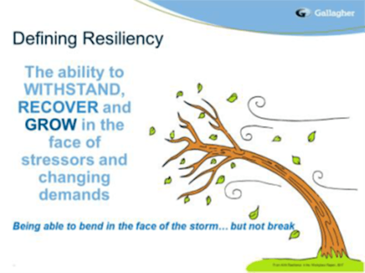 Employer Workshop #4: Creating Resilience in the Workplace image