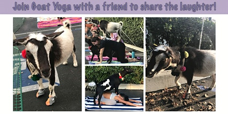 Goat Yoga Halloween Party tickets