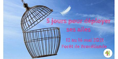 5 jours pour déployer vos ailes dans  la forêt de Brocéliande billets