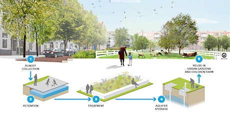 [Webinar] How to use rainwater to create climate resilient urban spaces? tickets
