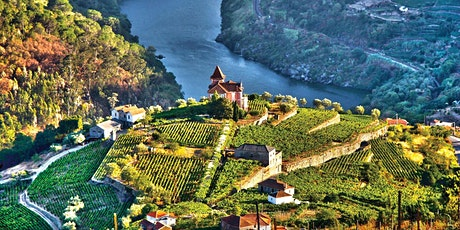 Discovering Wines from 4 Wine Regions of Portugal tickets