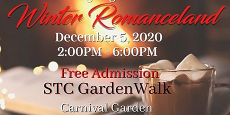Winter Romanceland Author Signing Event tickets