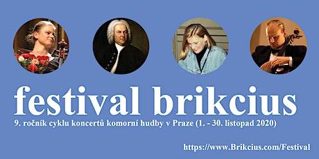 FESTIVAL BRIKCIUS 2020 - mezinárodní projekt MUSICAL SOLIDARITY / COVID-19 tickets