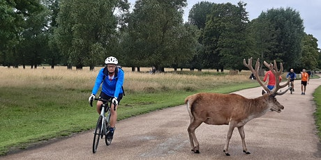 ECC Leisurely Ride (4): Three Parks Ride: Richmond, Bushy & Syon tickets