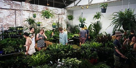 Canberra - Huge Indoor Plant Sale - Rare Plant Party tickets