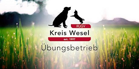 IRJGV Kreis Wesel - Übungsstunde - Winterzeit