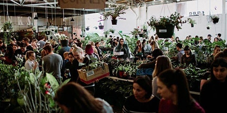 Perth - Huge Virtual Indoor Plant Sale - Rare Plant Party tickets