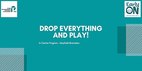 Copy of Copy of IN CENTRE PROGRAM - Drop Everything & Play!  (0- 6 years ) tickets