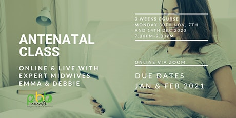 3 week Online Antenatal Class - Midwife Led tickets