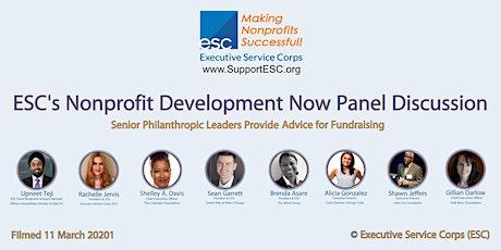 ESC's Nonprofit Development Now Panel Discussion tickets