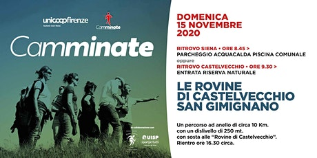 Camminate - Le rovine di Castelvecchio San Gimignano