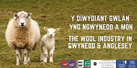 Gwlan yng Ngwynedd a Môn Pennod 1 / Wool in Gwynedd and Anglesey Episode 1 tickets
