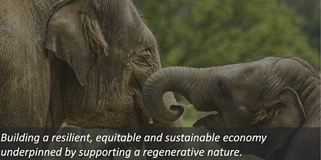 Reinventing carbon markets with elephants and technology