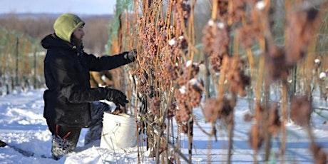 WINE CLASS: Season Changing Wines tickets
