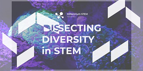 Dissecting Diversity  in STEM tickets