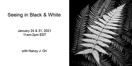 Seeing in Black & White Virtual Workshop tickets