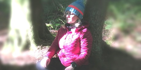 Forest Immersion  at Fairy Glen tickets
