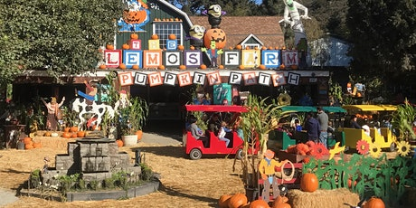 Mid Day October Pumpkin Patch (11am - 3pm) tickets