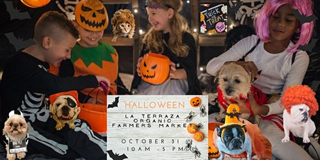 Spooktacular Halloween!  La Terraza Organic is hosting Craft-O-Ween tickets