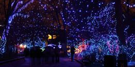 Wildlights Evening Photography at Denver Zoo-Lecture & Gallery Show- Denver tickets