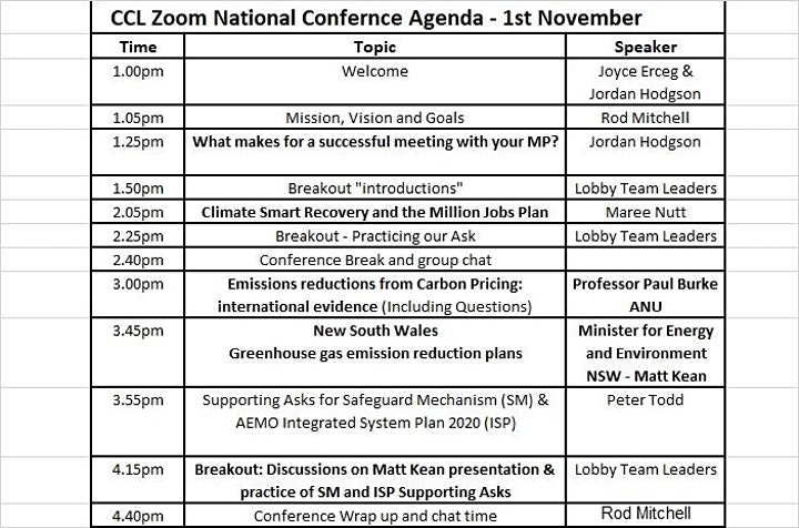Online National Conference & Week of Lobbying MP's using Zoom image