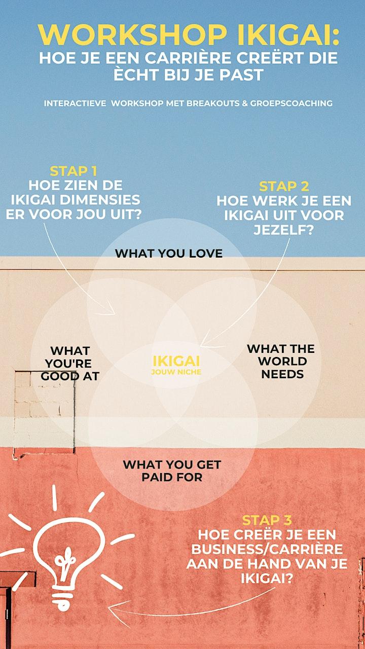Afbeelding van Workshop ikigai  Hoe je een carrière creërt die echt bij je past