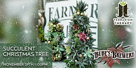 In-Person  - Succulent Christmas Tree at Bube's Brewery tickets