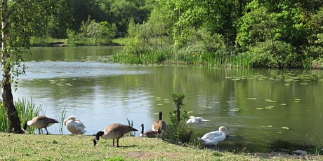 Proposing a National Nature Reserve from Wigan Flashes to Pennington Flash tickets