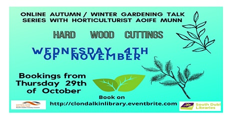 Hard Wood Cuttings.  Online  Gardening talk with Aoife Munn.