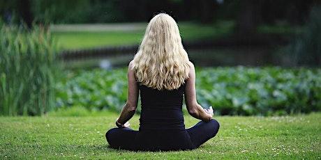 Mindfulness entradas
