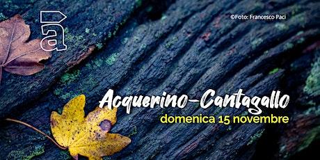 Acquerino-Cantagallo biglietti