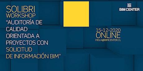 """Solibri Workshop: """"Auditoría de calidad orientada a proyectos con SDI BIM"""" entradas"""