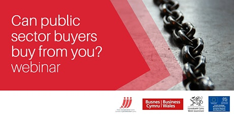 Can public sector buyers buy from you?