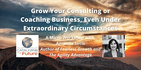 Grow Your Consulting or Coaching Business, Even Under Extraordinary Circums tickets