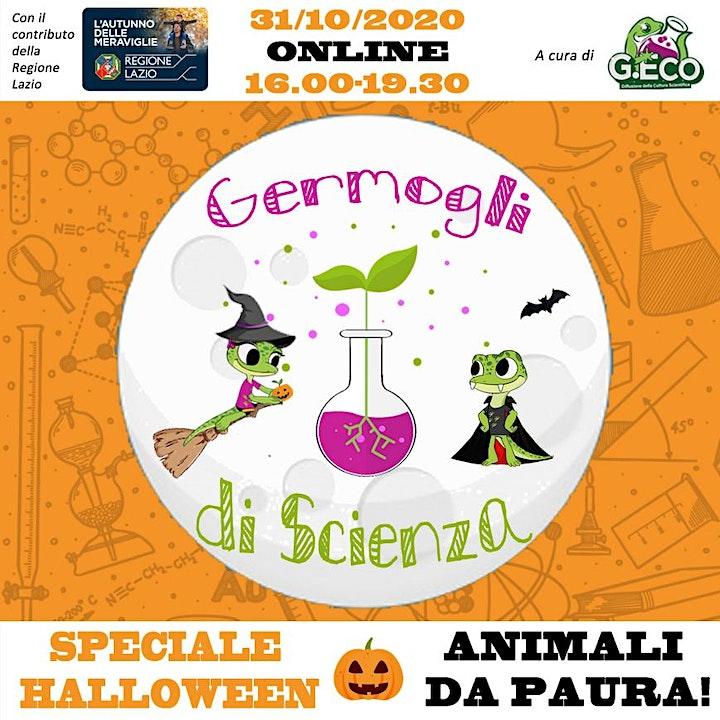 """Immagine ANIMALI DA PAURA! - Germogli di Scienza """"Speciale Halloween"""""""