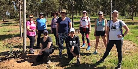Women's ACT Free Meet Up Hike // Shepherds Lookout Loop tickets