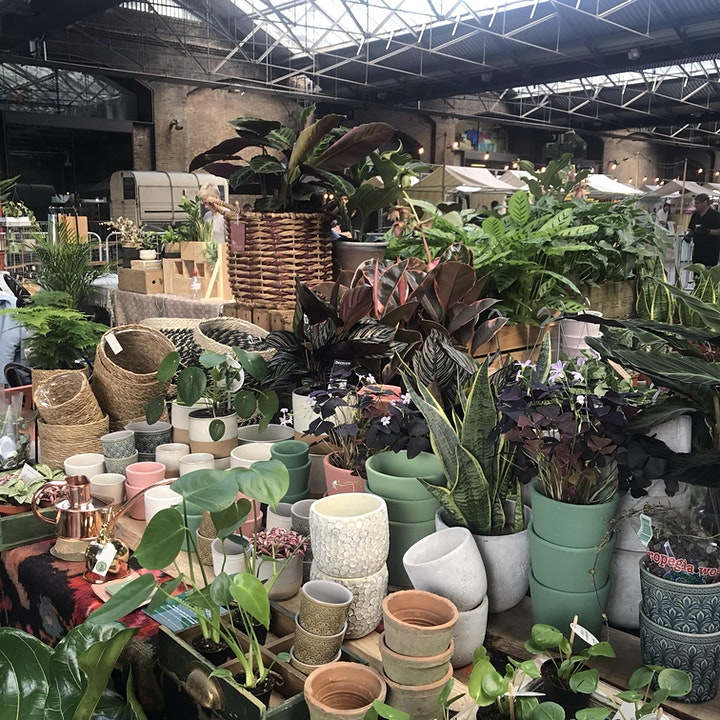 Green Rooms Plant market at Canopy Market, King's Cross image