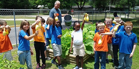 Children in the Vegetable Garden - Virtual Presentation