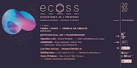 ECOSS 2020 entradas