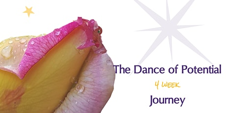 The Dance of Potential (4 week) Journey for Women