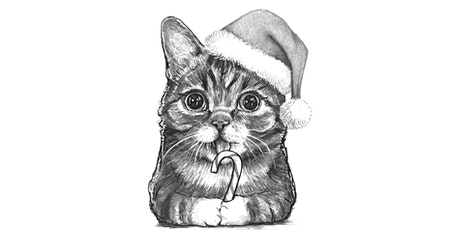 60min Animal Pencil Sketching Art Lesson - Christmas Cat @5PM (Ages 7+) tickets