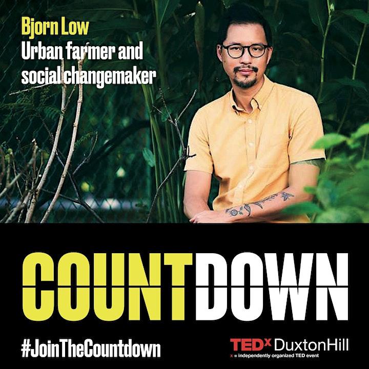 TEDx DuxtonHill image