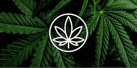 Webinaire 1 : Lois et règlements sur le cannabis billets