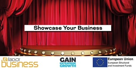 Showcase Your Business - Networking With Constructive Feedback! 3/3 tickets