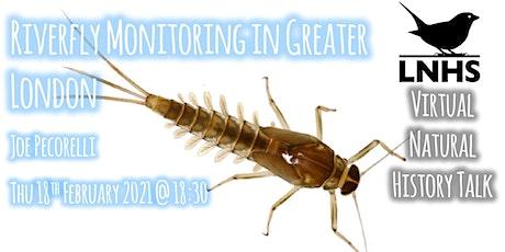 Riverfly Monitoring in Greater London by Joe Pecorelli