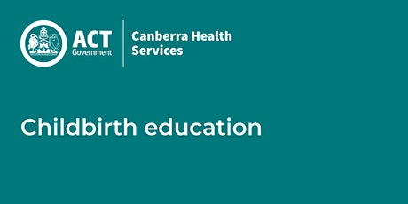 Online Childbirth Education: Pregnancy to Parenting Session 1 of 4 tickets
