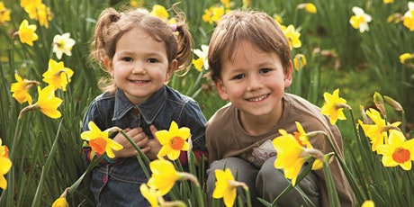 Supporting Siblings: Building Positive Relationships tickets