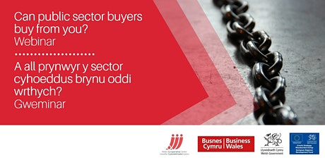 Can public sector buyers buy from you? tickets