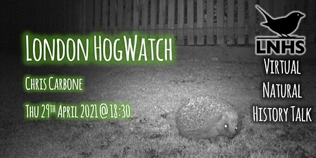 London Hogwatch by Chris Carbone tickets